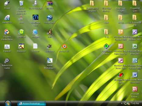 My desktop as of 5-20-06 by Darlyn-Perez
