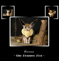 Eevee, the Fennec Fox by NiaWolf