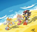 Tails,Cream,Shadow -Innocence by Tigerfog