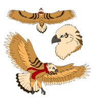 Adoptable Eagle by TaraviAdopts