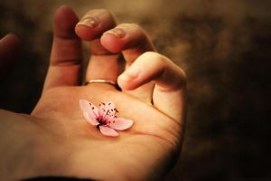 Spring is in my hand by Samantha-meglioli