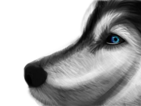 Wolf by asoulforallanimes