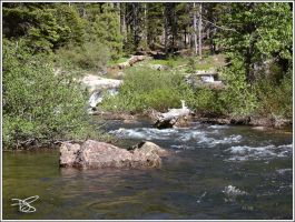 South Fork Reprise 060617 by dirtycar74