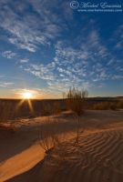 Kalahari Desert Morning by MorkelErasmus