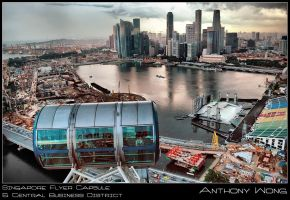 Singapore Flyer Skyline 4 by inckurei