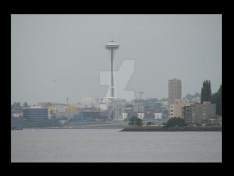 Seattle Grey by BloodyAthena279