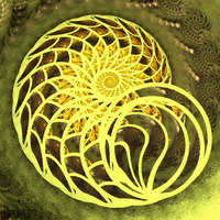 Nautilus shell by bunnywithrose