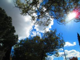 sunny day Madrid 1 march by AnnarXy