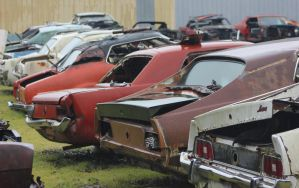 Where Mustangs go to die by finhead4ever