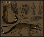 Zin Ref Sheet by Kerrzai