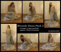 Brocade Dress Pack 2 by delainestock