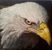 Eagle - acrylic painting by Giselle-M