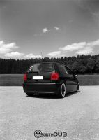VW POLO 6n by FatmeBondage
