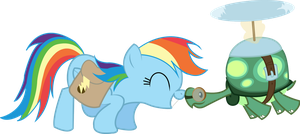 Rainbow Dash and Tank by Audoubled