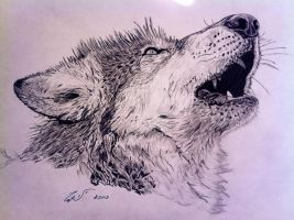 Wolf by TripleS-Art