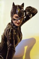 Catwoman Cosplay, Birmingham Comic-Con 2013 by masimage