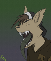 Art Trade: HHC by Hipster-Coyote