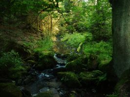 The valleys of Lothlorien 1 by Dragoroth-stock
