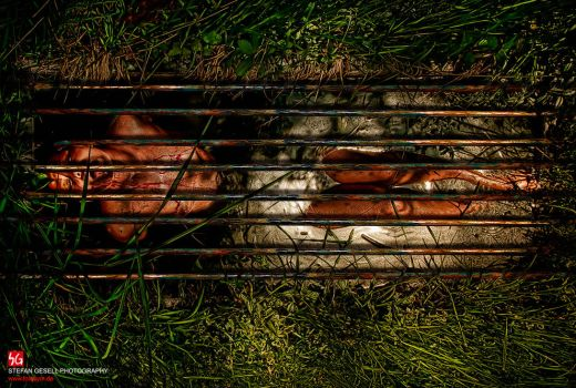 CLAUSTROPHOBIA by Gesell