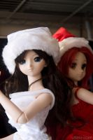 Dollfie Christmas 03 by ultima-i