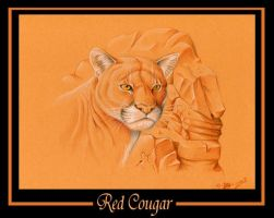 Red Cougar by tarkheki