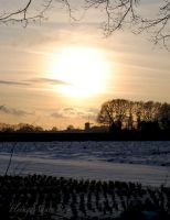 Dutch winter outside Garderen by FlyingMantaRay