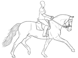 Free Use Dressage Training by Vox-Morda