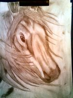 Hors face by Proteusz