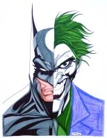 Batman Joker Portrait by ESO2001