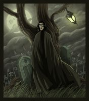 Severus Snape and the Grave by kyla79