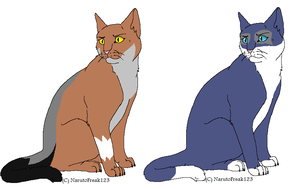 Ciaran and Dakota as warrior cats by WILFRE-IS-AWESOME