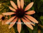 ..Count Your Blessings... by lyndonovan