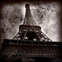 tour eiffel. by simoendli