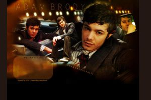 Adam Brody Layout by lipbalsam