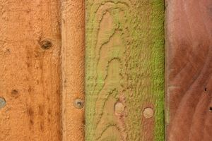 Wooden Fence Colours Abstract by aegiandyad