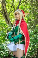 Protector of the Forest by AnnaLynnCosplay