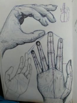 Hand study by Spinian