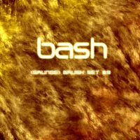 Bash -- Grunge Brush Set_9 by B-a-s-h