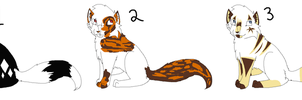 Tom Cats Adoptables :OPEN: by Rose-Sherlock