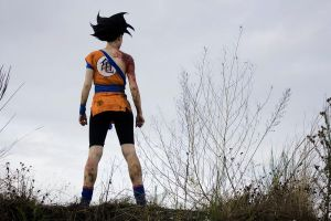 Goku Cosplay by Elita-01