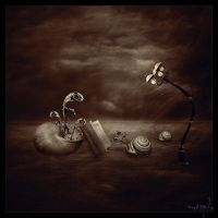 Silence , Night and Dreams by the-surreal-arts