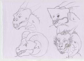 Animal inspired dragon faces. by DucoNL
