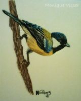 Drawing of a little bird .. by Monique-Art