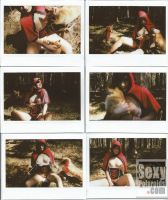 Fantastic Mr. Fox by SexyPolaroid