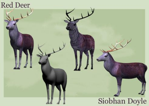 Stag by datoria