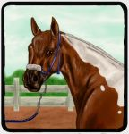 GHS Kirnu : Auras RNG MiniShow by Golden-Horse-Stables