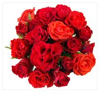 Bunch of red roses by kuzjka