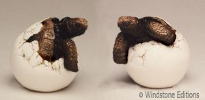 Hatching tortoise by Reptangle