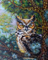 The great horned owl by oliecannoligriffard