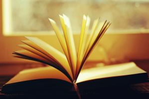 Turn the page by BlueColoursOfNature